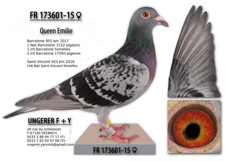001_queen_emilie