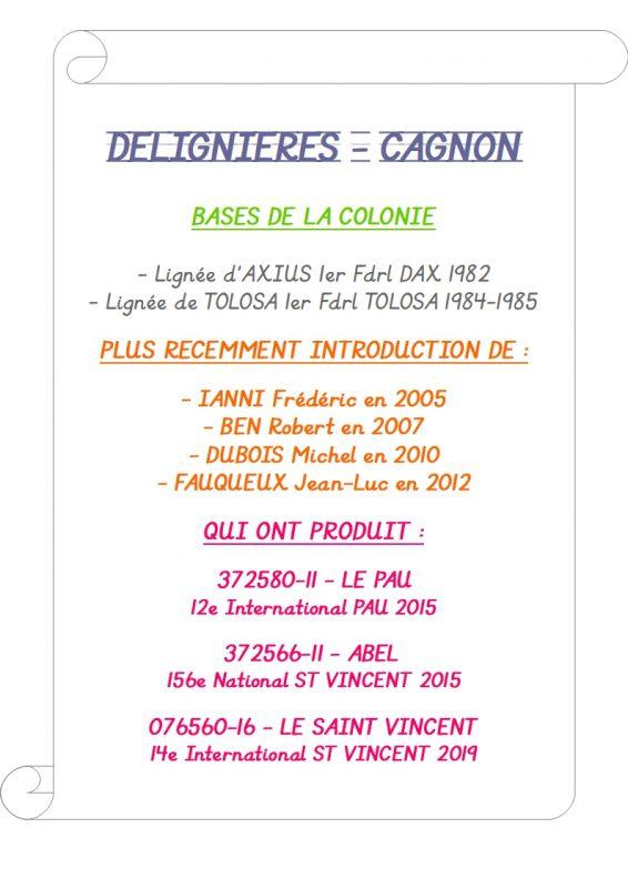 Cagnon presentation colonie