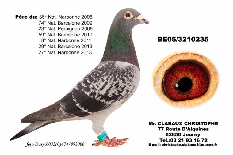 Clabaux Top Reproducteur