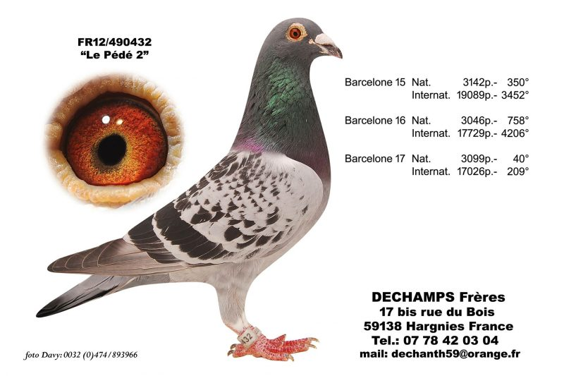 Dechamps Freres Le Pede2