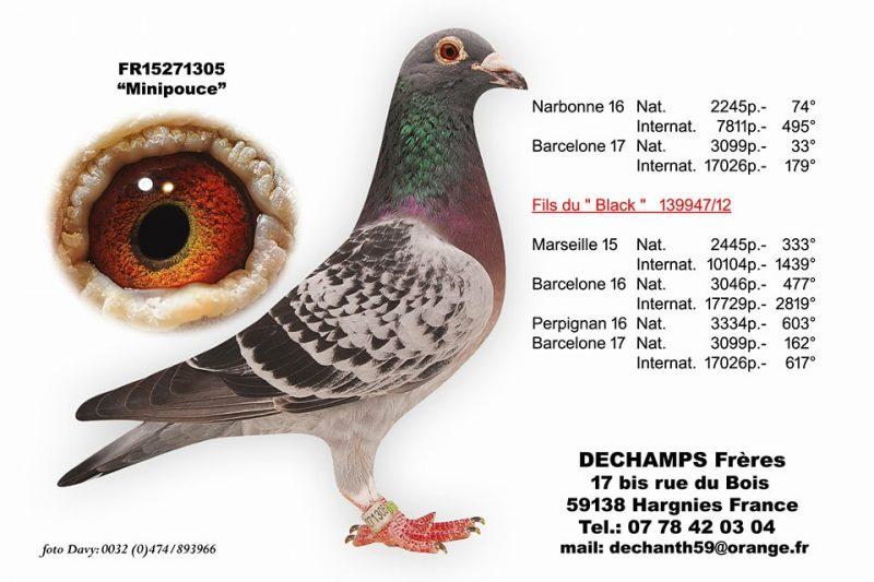 Dechamps Freres Minipouce