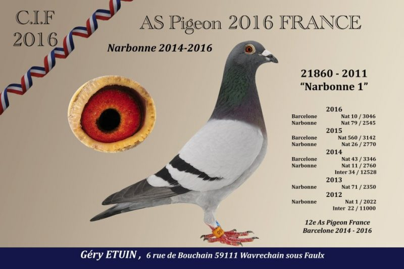 Etuin Narbonne 1
