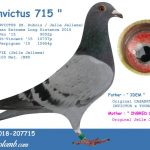 FR 2018-207715 : Invictus 715 – Inbred Invictus Best European Extreme Long Distance 2015