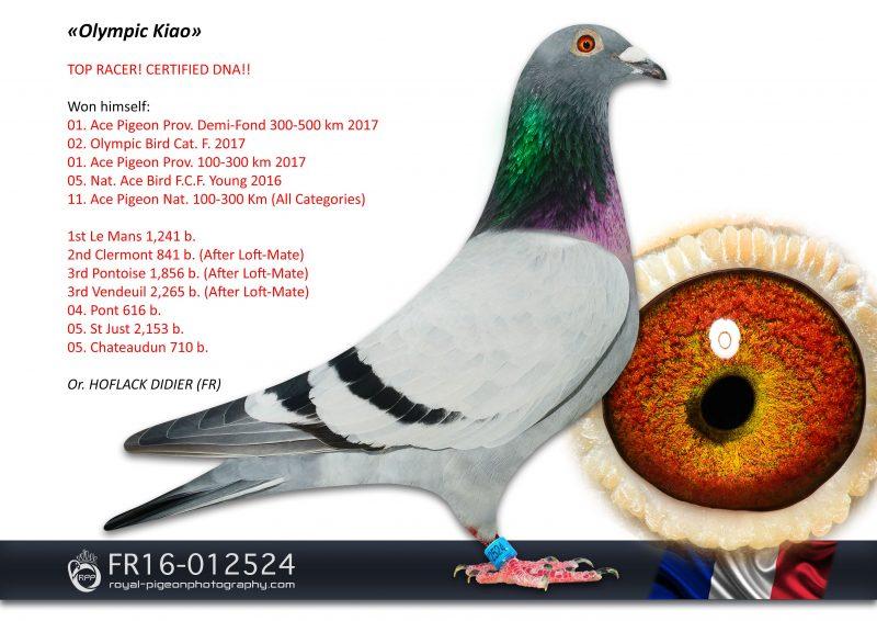 FR16-012524-RPPmas-LR