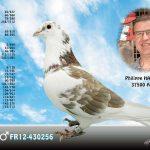 N° 1 : Philippe HAQUETTE de 37500 ANCHE