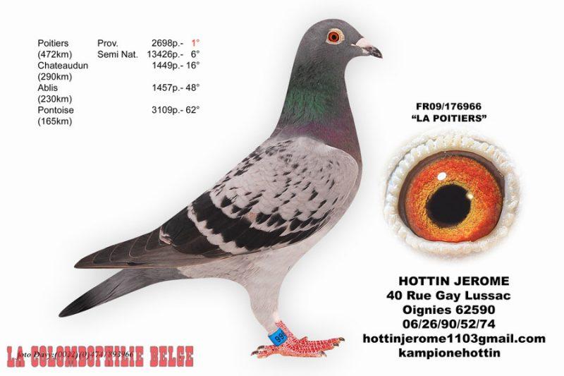 Hottin La Poitiers