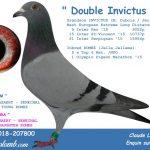 Ledoux C FR 2018-207800_txt_small