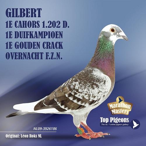 Roks Leon Gilbert