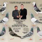 N° 9 : Roger & Fils SENICOURT de GRAVELINES