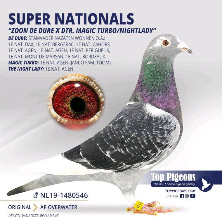 Super Nationals