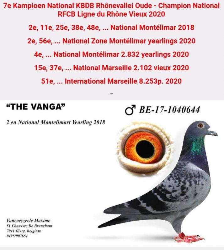 Vancaeyzeele2