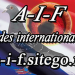 Point Association des Internationaux de France (A.I.F)