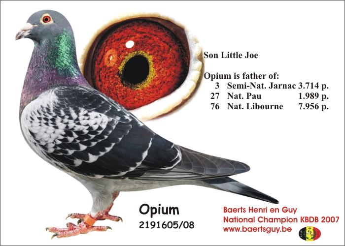 baerts opium 08-2191605-116