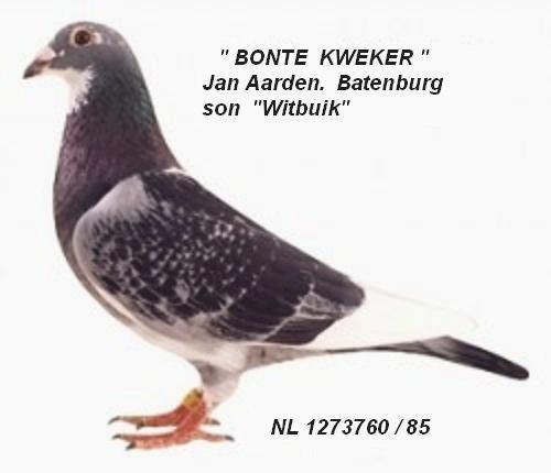 batenburg Bonte Kweker