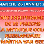 MARTHA VAN GEEL (NL) – 1ère IATP Ranking 2019