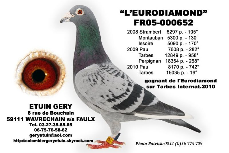 etuin gery eurodiamond