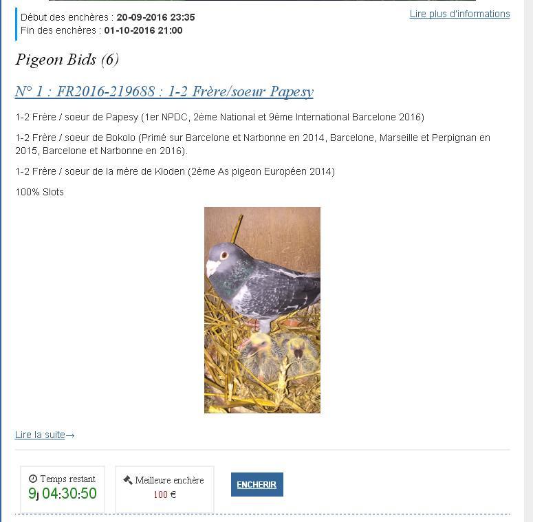 faq encheres liste pigeons