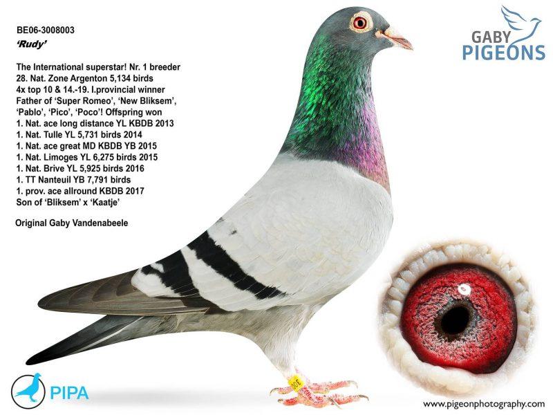 flavigny_BE06-3008003_main_0[1]