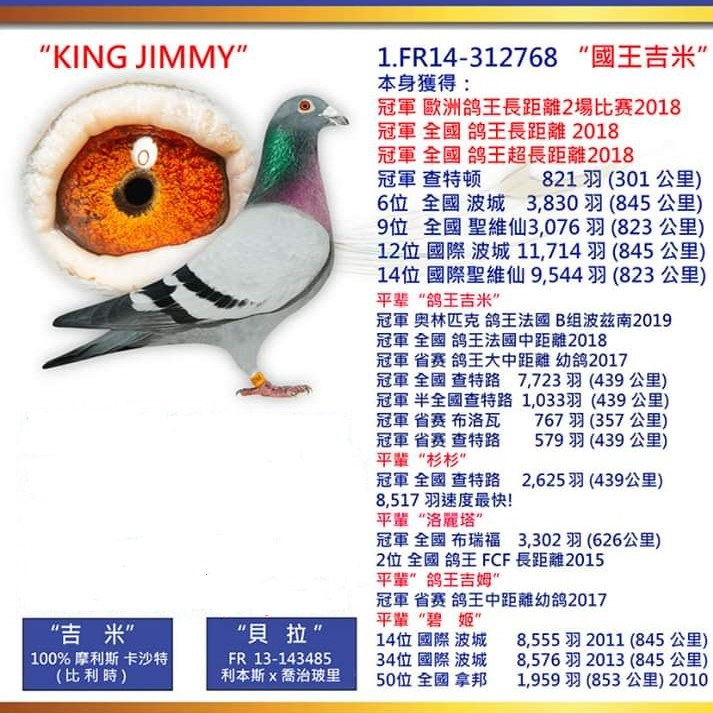 king jimmy CN