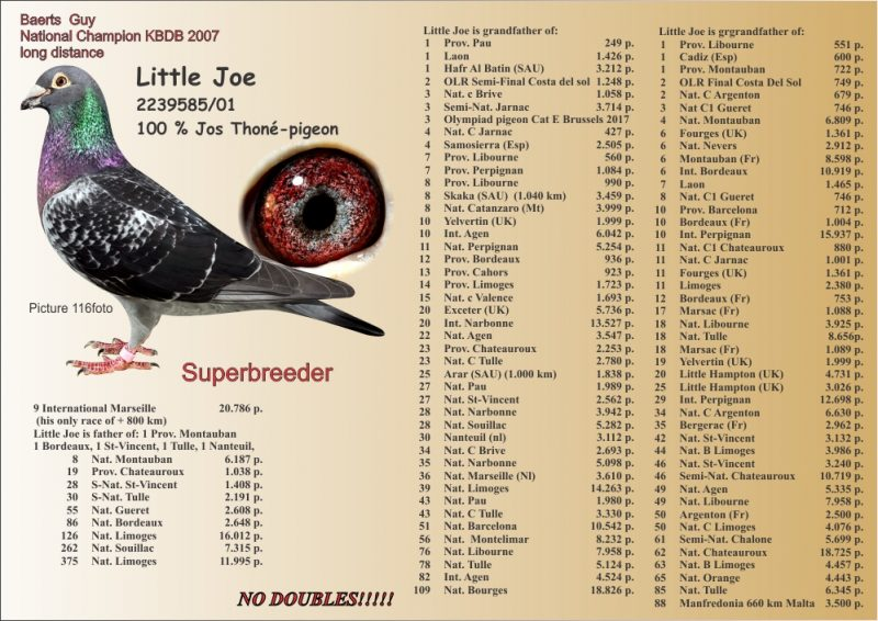 littlejoe2014lsc-1000