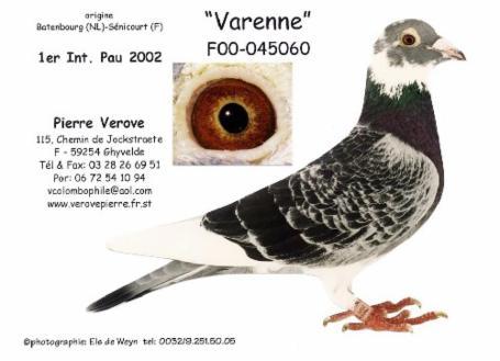 verove Varenne 1er Pau 2002