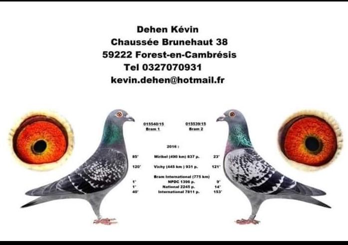 Dehen Kevin