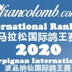 Francolomb International Ranking 2020 – Ace Pigeon Perpignan