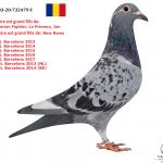 "1.09 : RO 2020-732479 : ""Sumerian Fighter"" –  ""Jan Barcelona"" – ""La Primera"" –  ""New Remy"" – ""New Laureaat"" – ""Special One"""