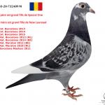 "1.05 : RO 2020-732489 : 4 X New Laureaat –  1 X ""Bonte Narbonne"" – 1 X ""New Wittenbuik"" – 1 X ""Special One "" – 1 X  ""Kleine Jade"" – 1 x ""New Remy"""