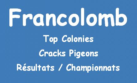fr_rubrique top colonies