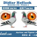 Vente : Didier Hoflack de Boursin (62)