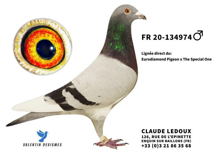 ledoux_134974