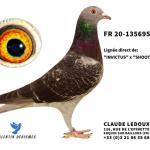 FR 2020-135695 : Petite-Fille 1er International St-Vincent 2018