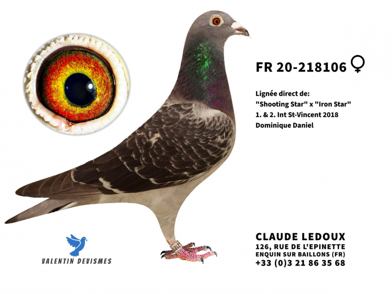ledoux_2018106-2020