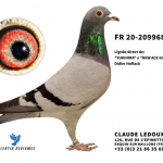 FR 2020-209968 : 100% Didier Hoflack – Petite-Fille Jimmy / New ACE GIRL