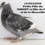 1.09 : FR2020-121874 : Petite-Fille GADGET