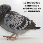 1.11 : FR2020-121876 : Petite-Fille OSWALD