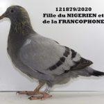 1.08 : FR2020-121879 : Fille du NIGERIEN et la FRANCOPHONE