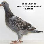 1.21 : FR2020-395744 : Petite-Fille Crack HAMET