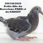 1.20 : FR2020-395748 :