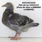 1.17 : FR2020-395749 :