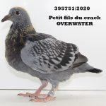 1.15 : FR2020-395751 : Petit-Fils Crack Overwater