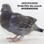 1.16 : FR2020-395752 : Petit-Fils Crack Overwater